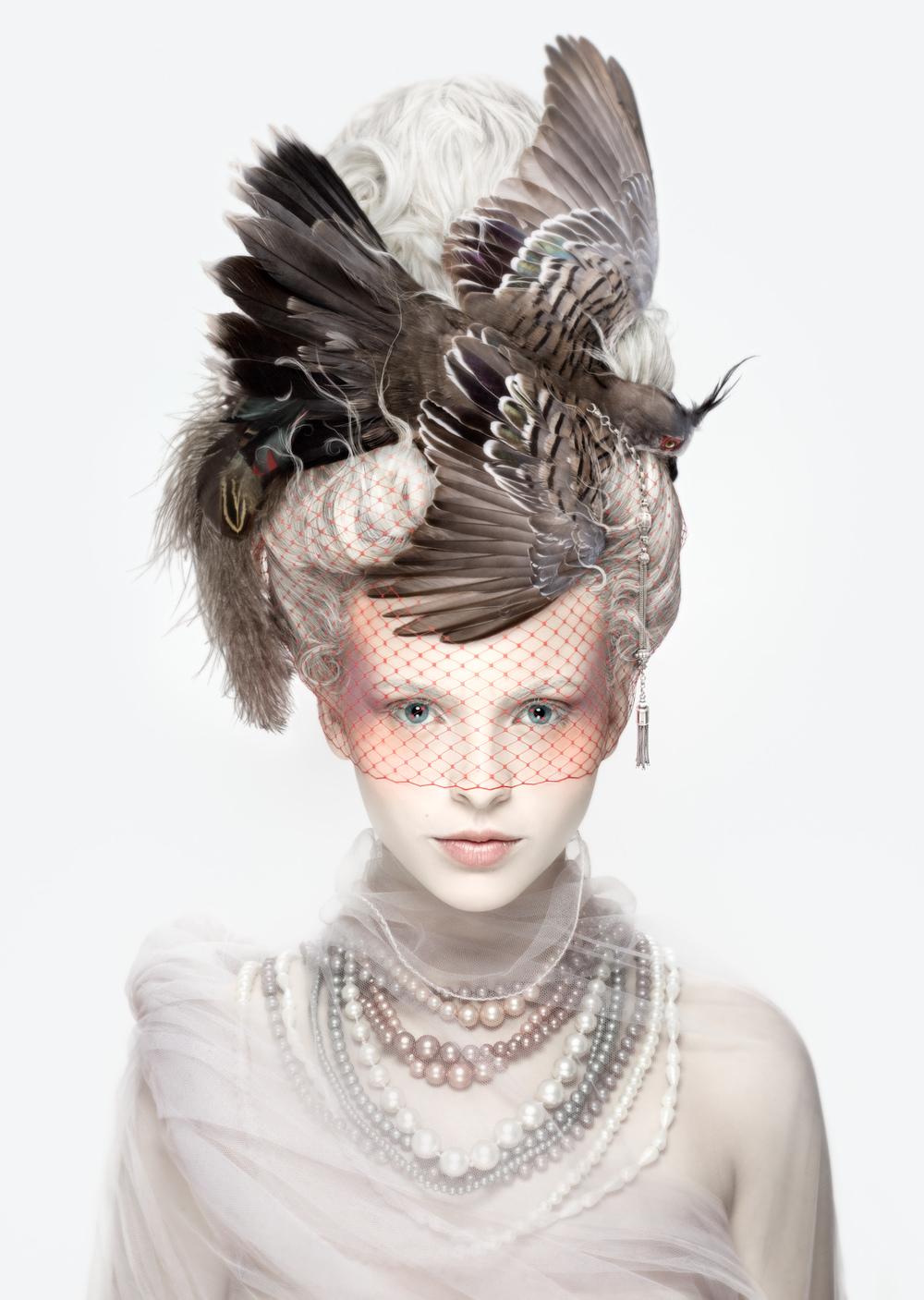 Marie antoinette la coiffure oiseau