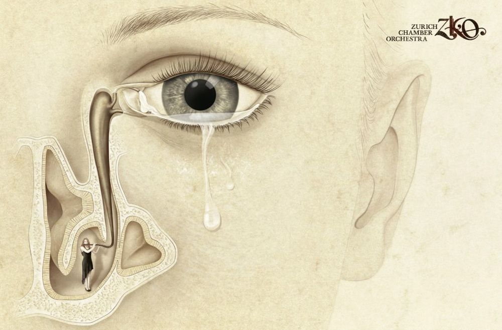 You bring tears to my eyes - The Zurich Chamber Orchestra