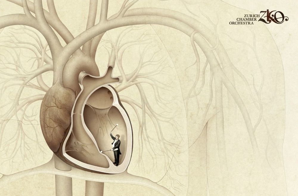 My heart beats like a drum - The Zurich Chamber Orchestra